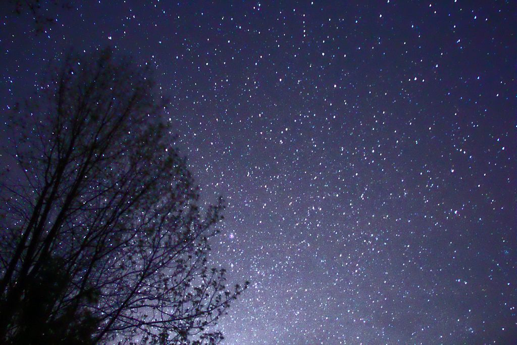 1024px-Night_Sky_Stars_Trees_02