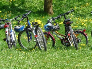 bicycles-family