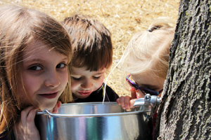 children at sap bucket rs