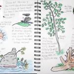 nature-journal