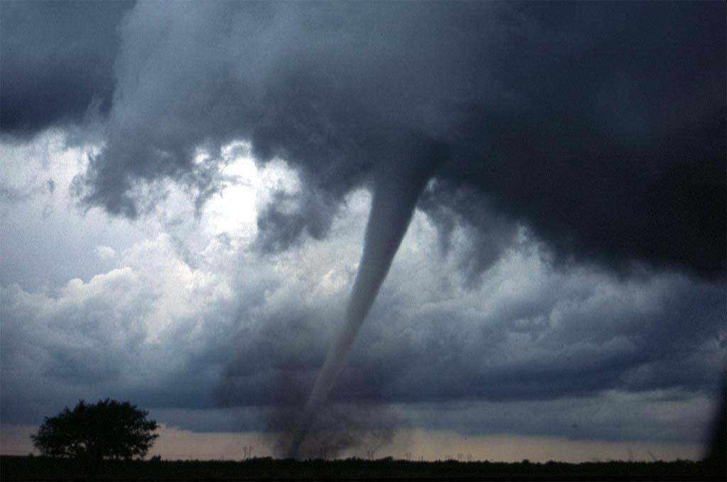 A tornado touching down near Anadarko, Oklahoma (Wikimedia)